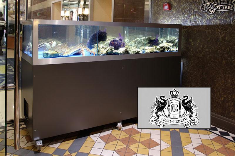 аквариум в аренду в ресторане гуси-лебеди